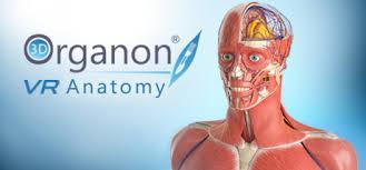 Virtual Reality app: 3D Organon Anatomy
