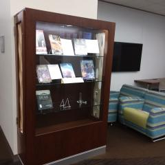 Library tall display case